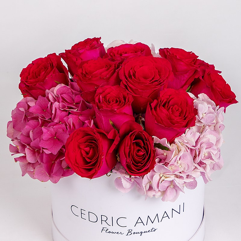 Red Rose and Pink Hydrangea - cedric amani